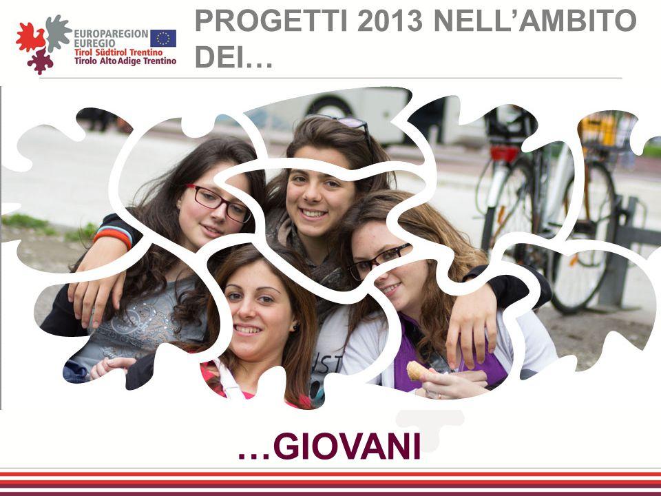 …GIOVANI PROGETTI 2013 NELL'AMBITO DEI…