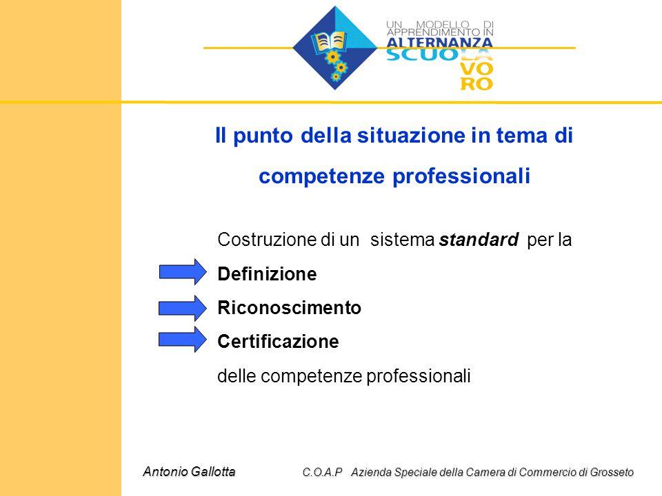 Il punto della situazione in tema di competenze professionali Costruzione di un sistema standard per la Definizione Riconoscimento Certificazione dell