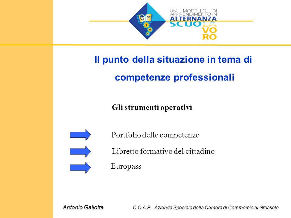 Il punto della situazione in tema di competenze professionali Antonio Gallotta C.O.A.P Azienda Speciale della Camera di Commercio di Grosseto Gli stru