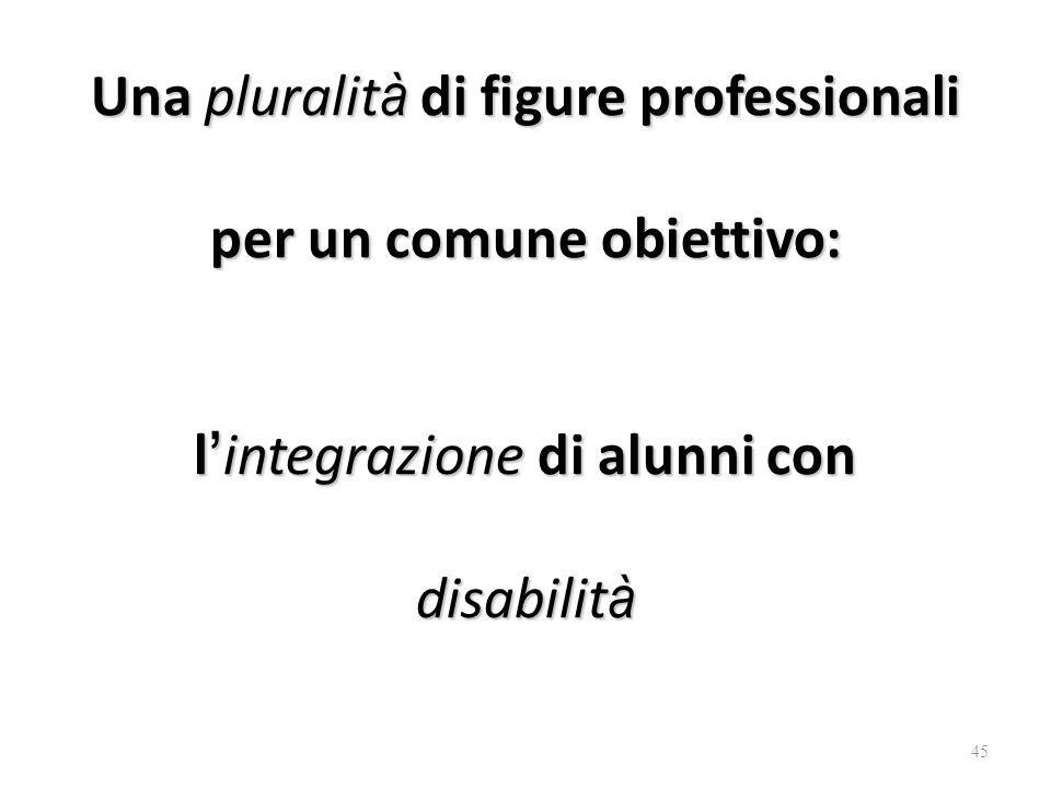 Una pluralit à di figure professionali per un comune obiettivo: l ' integrazione di alunni con disabilit à 45