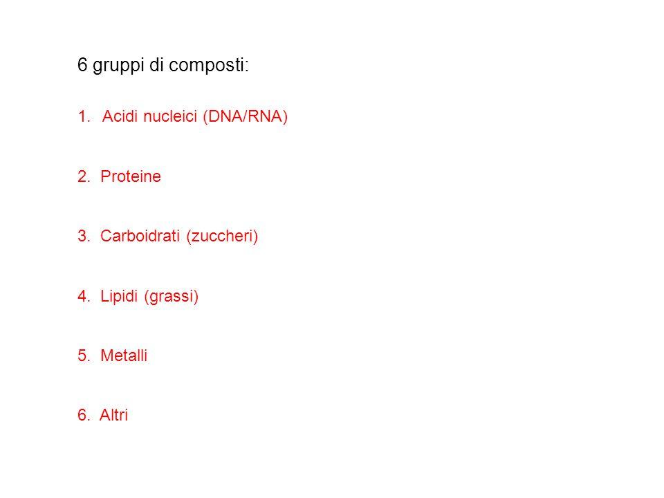 1.Acidi nucleici (DNA/RNA) 2. Proteine 3. Carboidrati (zuccheri) 4. Lipidi (grassi) 5. Metalli 6. Altri 6 gruppi di composti: