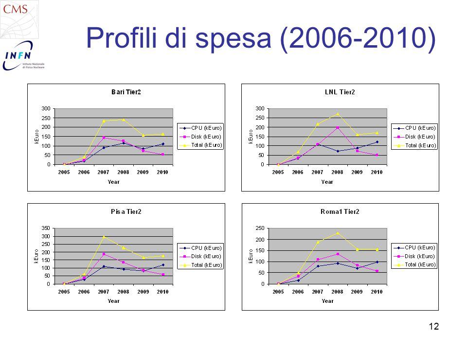 12 Profili di spesa (2006-2010)