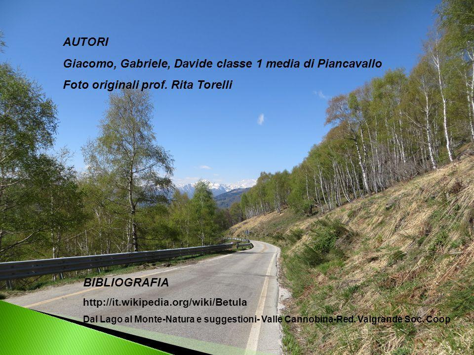 BIBLIOGRAFIA http://it.wikipedia.org/wiki/Betula Dal Lago al Monte-Natura e suggestioni- Valle Cannobina-Red. Valgrande Soc. Coop AUTORI Giacomo, Gabr