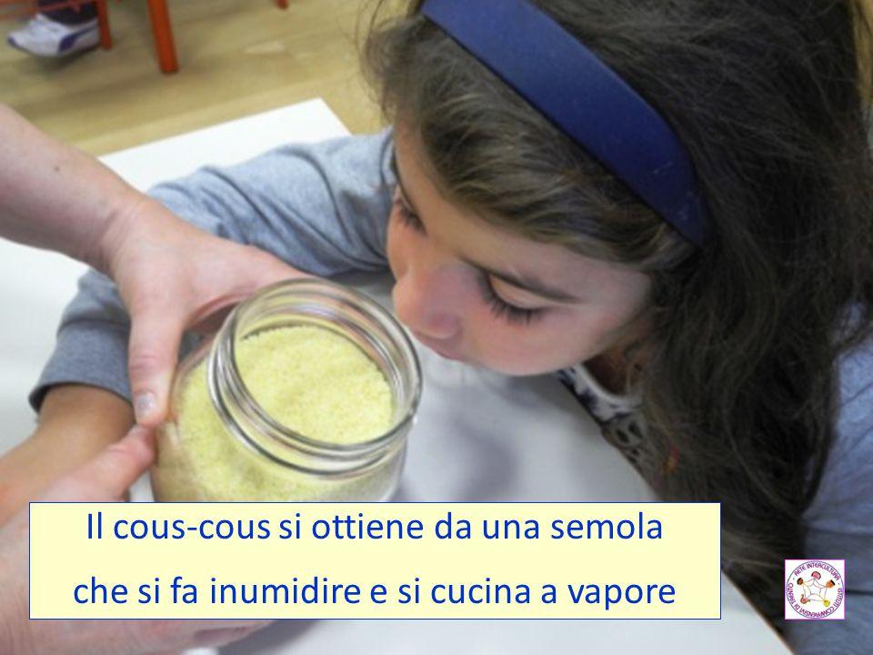 Il cous-cous si ottiene da una semola che si fa inumidire e si cucina a vapore
