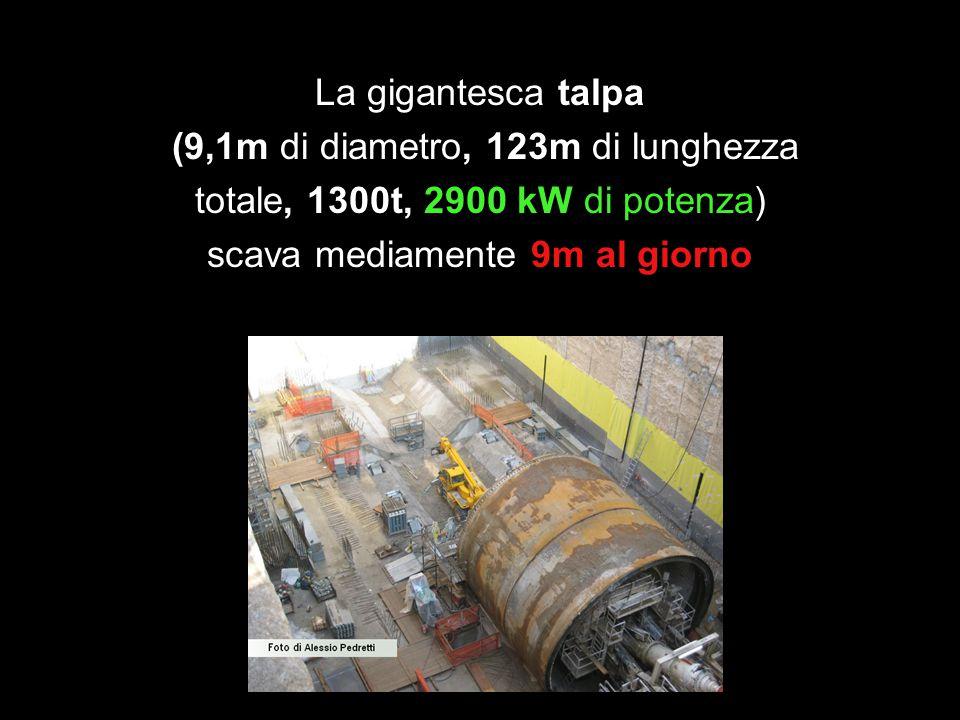 La gigantesca talpa (9,1m di diametro, 123m di lunghezza totale, 1300t, 2900 kW di potenza) scava mediamente 9m al giorno