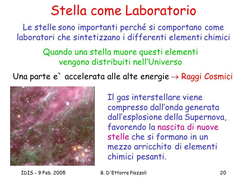 IDIS - 9 Feb. 2005B. D'Ettorre Piazzoli20 Stella come Laboratorio Le stelle sono importanti perché si comportano come laboratori che sintetizzano i di