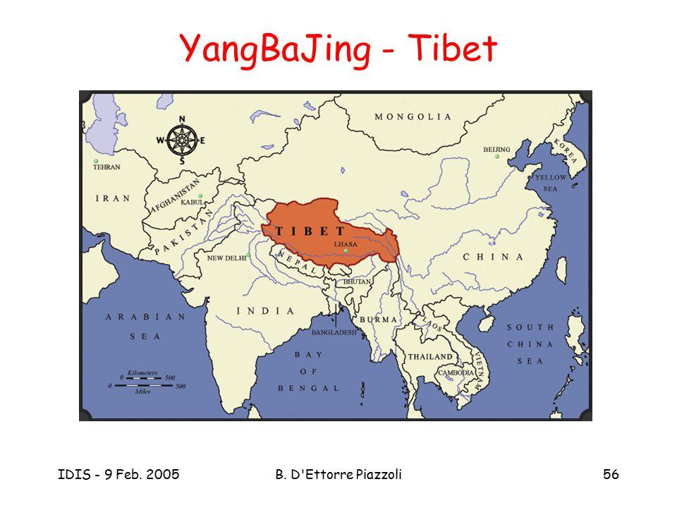 IDIS - 9 Feb. 2005B. D'Ettorre Piazzoli56 YangBaJing - Tibet
