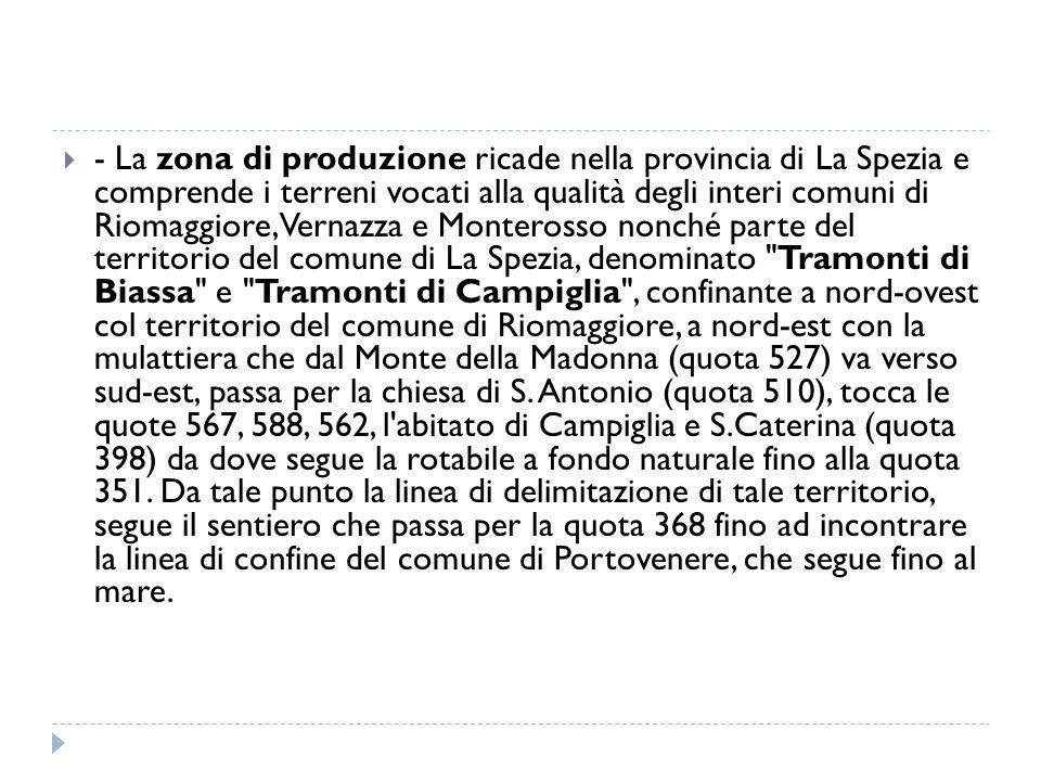  - La zona di produzione ricade nella provincia di La Spezia e comprende i terreni vocati alla qualità degli interi comuni di Riomaggiore, Vernazza e