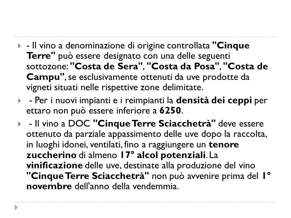  - Il vino a denominazione di origine controllata