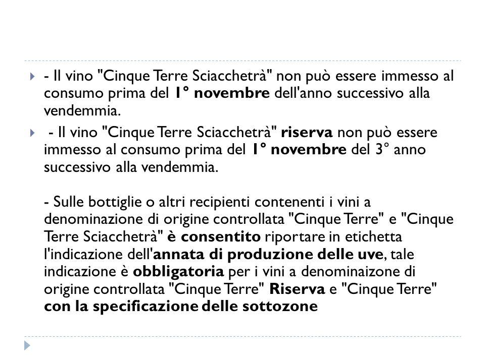  - Il vino