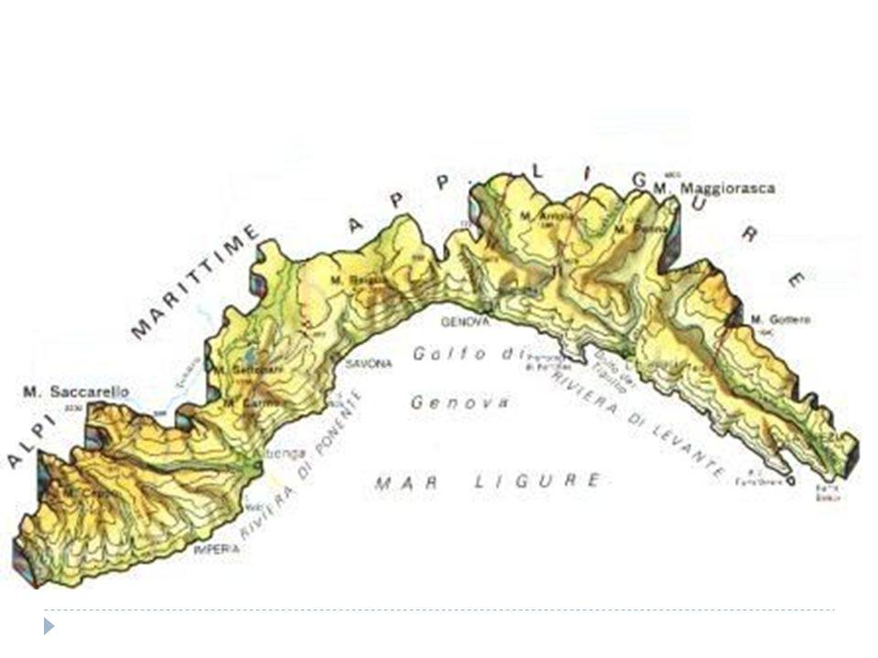 Territorio ed enografia  Il territorio della Liguria ha la forma di un arco che si estende tra la Toscana ed il confine francese, ed e stretto tra il mare ed i monti immediatamente a ridosso regalando alla regione la tipica varieta di vegetazione e clima che conosciamo.