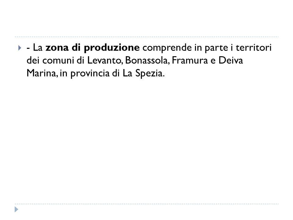  - La zona di produzione comprende in parte i territori dei comuni di Levanto, Bonassola, Framura e Deiva Marina, in provincia di La Spezia.