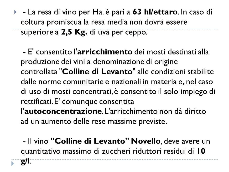  - La resa di vino per Ha. è pari a 63 hl/ettaro. In caso di coltura promiscua la resa media non dovrà essere superiore a 2,5 Kg. di uva per ceppo. -