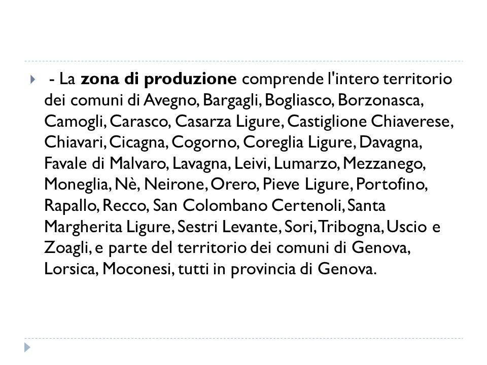  - La zona di produzione comprende l'intero territorio dei comuni di Avegno, Bargagli, Bogliasco, Borzonasca, Camogli, Carasco, Casarza Ligure, Casti