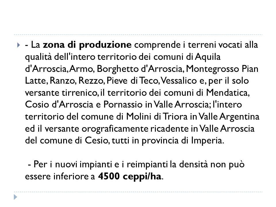  - La zona di produzione comprende i terreni vocati alla qualità dell'intero territorio dei comuni di Aquila d'Arroscia, Armo, Borghetto d'Arroscia,