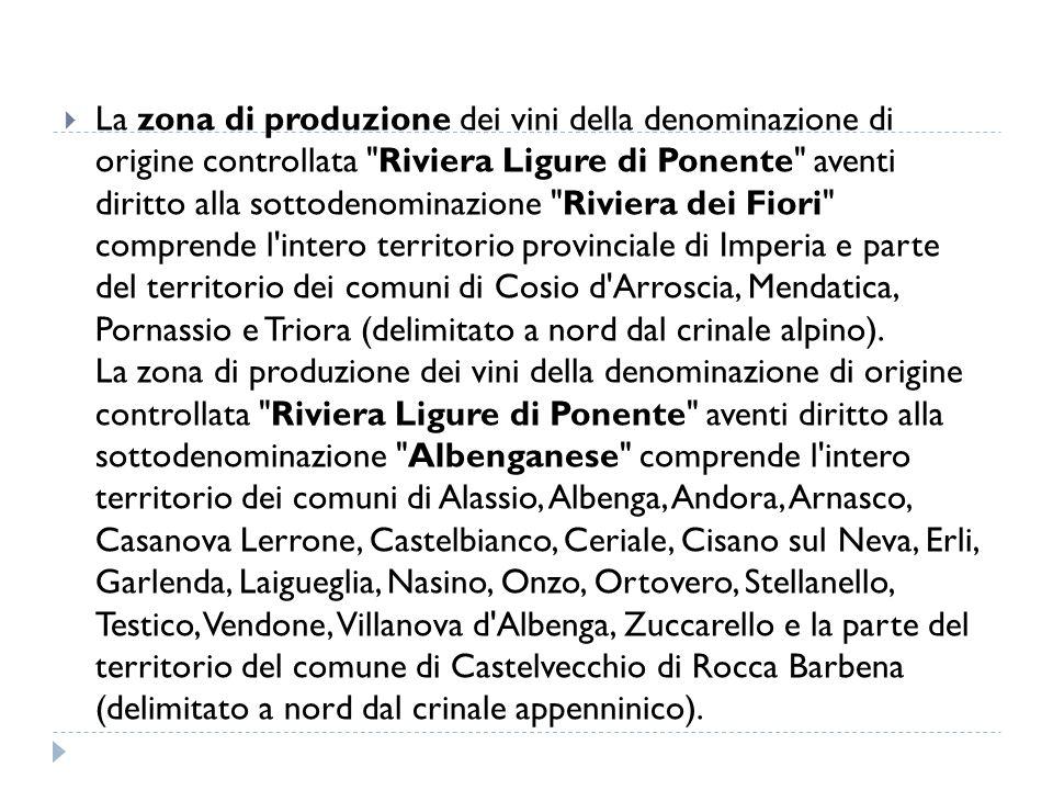  La zona di produzione dei vini della denominazione di origine controllata