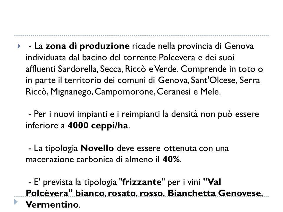  - La zona di produzione ricade nella provincia di Genova individuata dal bacino del torrente Polcevera e dei suoi affluenti Sardorella, Secca, Riccò