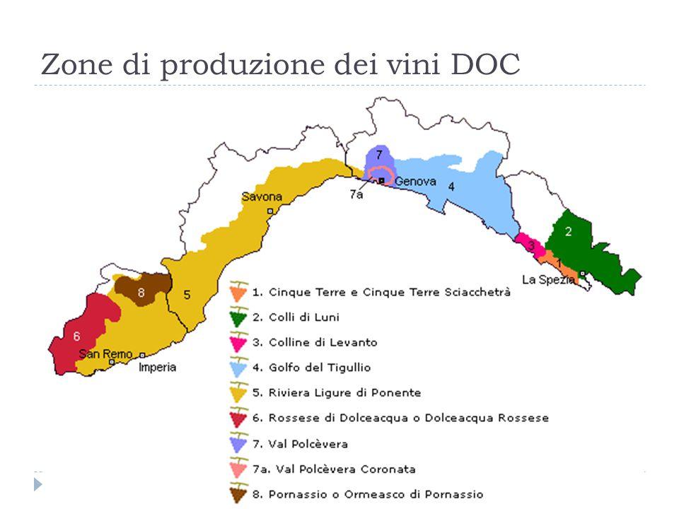 Zone di produzione dei vini DOC