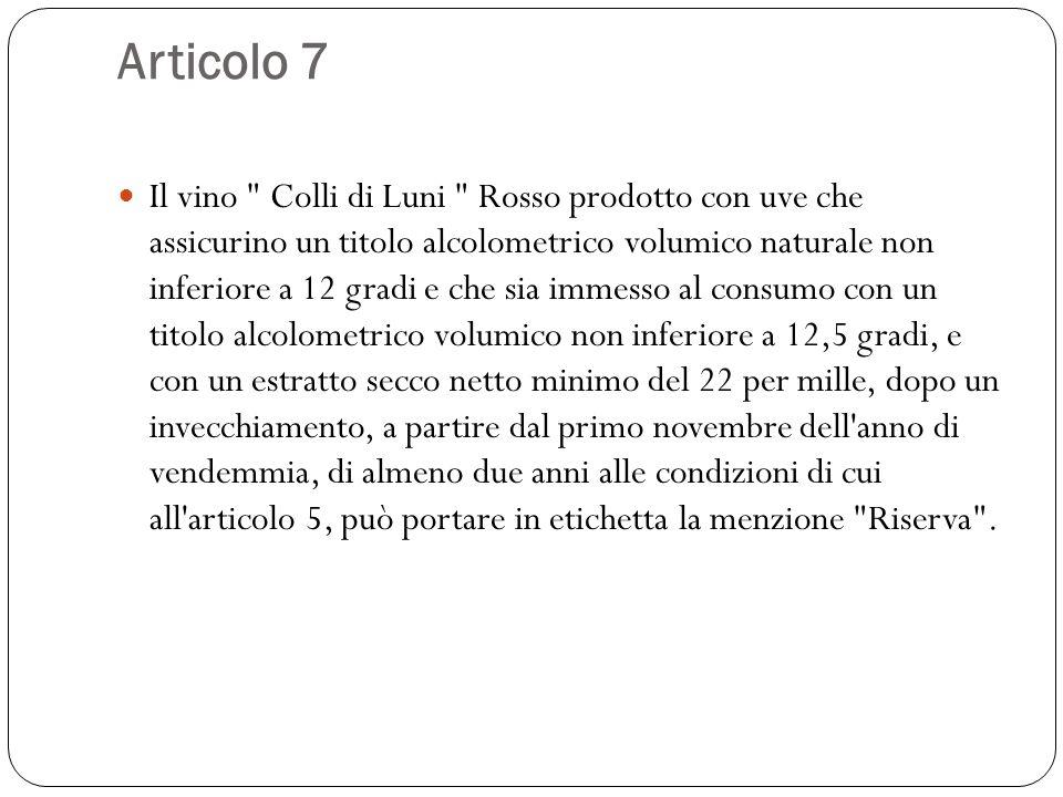 Articolo 7 Il vino