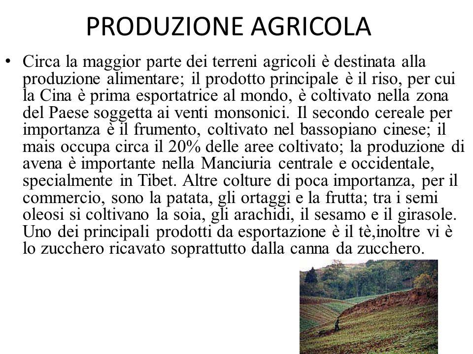 PRODUZIONE AGRICOLA Circa la maggior parte dei terreni agricoli è destinata alla produzione alimentare; il prodotto principale è il riso, per cui la C