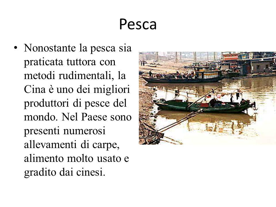 Pesca Nonostante la pesca sia praticata tuttora con metodi rudimentali, la Cina è uno dei migliori produttori di pesce del mondo. Nel Paese sono prese