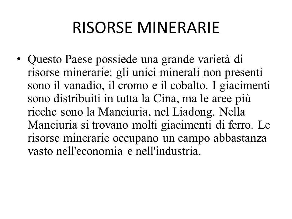 RISORSE MINERARIE Questo Paese possiede una grande varietà di risorse minerarie: gli unici minerali non presenti sono il vanadio, il cromo e il cobalt