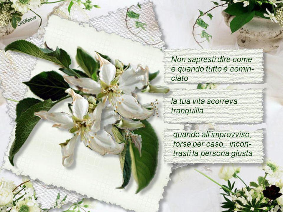 Gina Fazi
