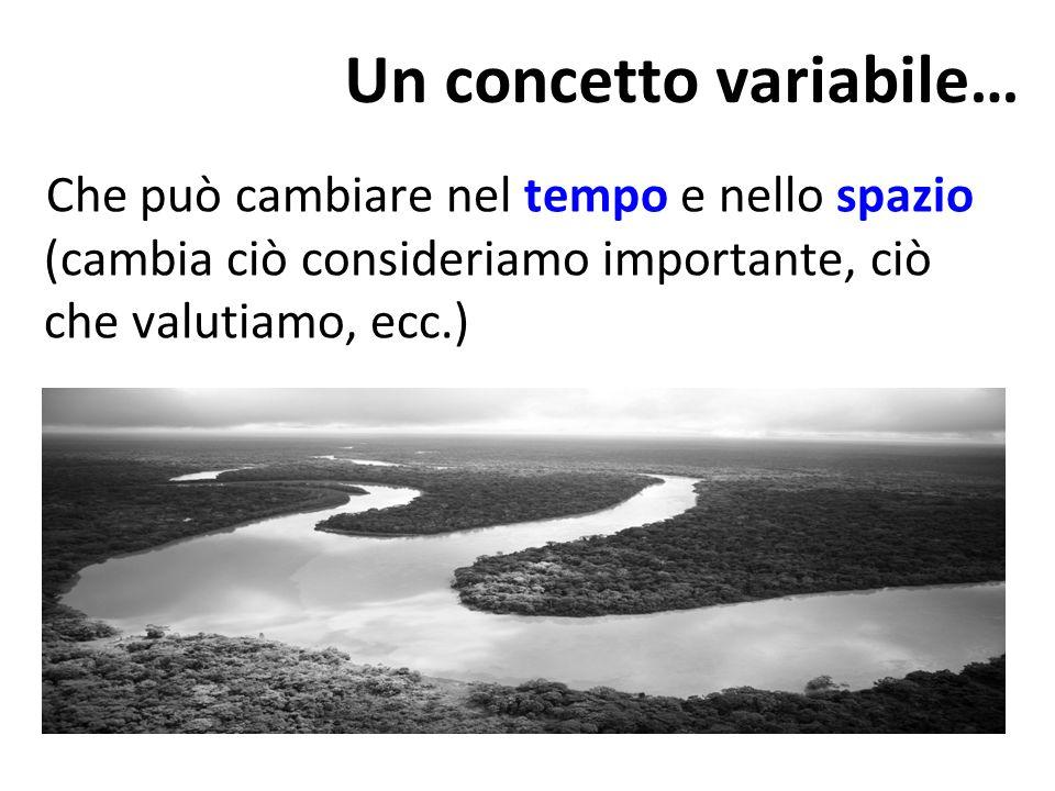 Che può cambiare nel tempo e nello spazio (cambia ciò consideriamo importante, ciò che valutiamo, ecc.) Un concetto variabile…