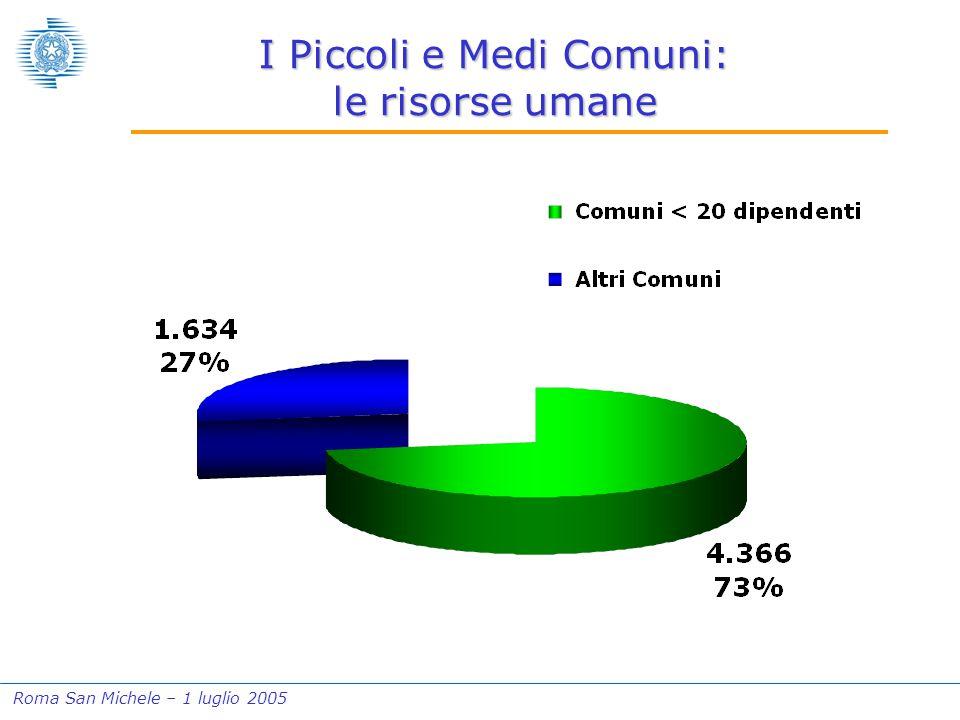 Roma San Michele – 1 luglio 2005 I Piccoli e Medi Comuni: le risorse umane
