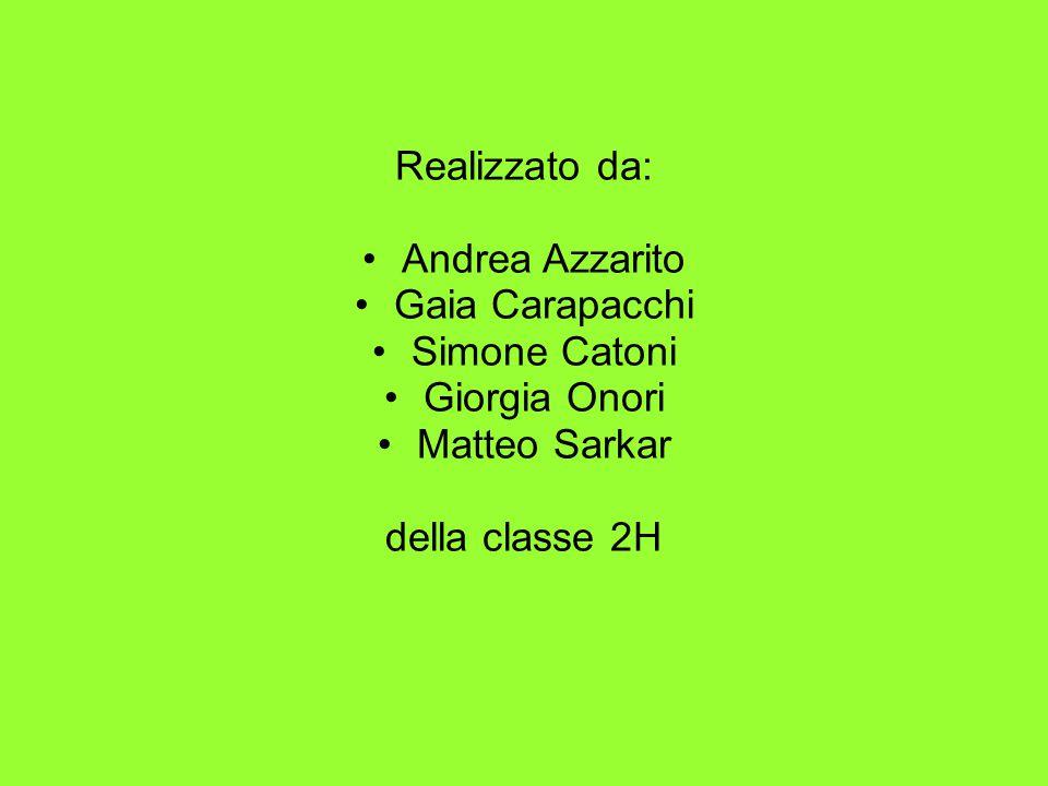 Realizzato da: Andrea Azzarito Gaia Carapacchi Simone Catoni Giorgia Onori Matteo Sarkar della classe 2H