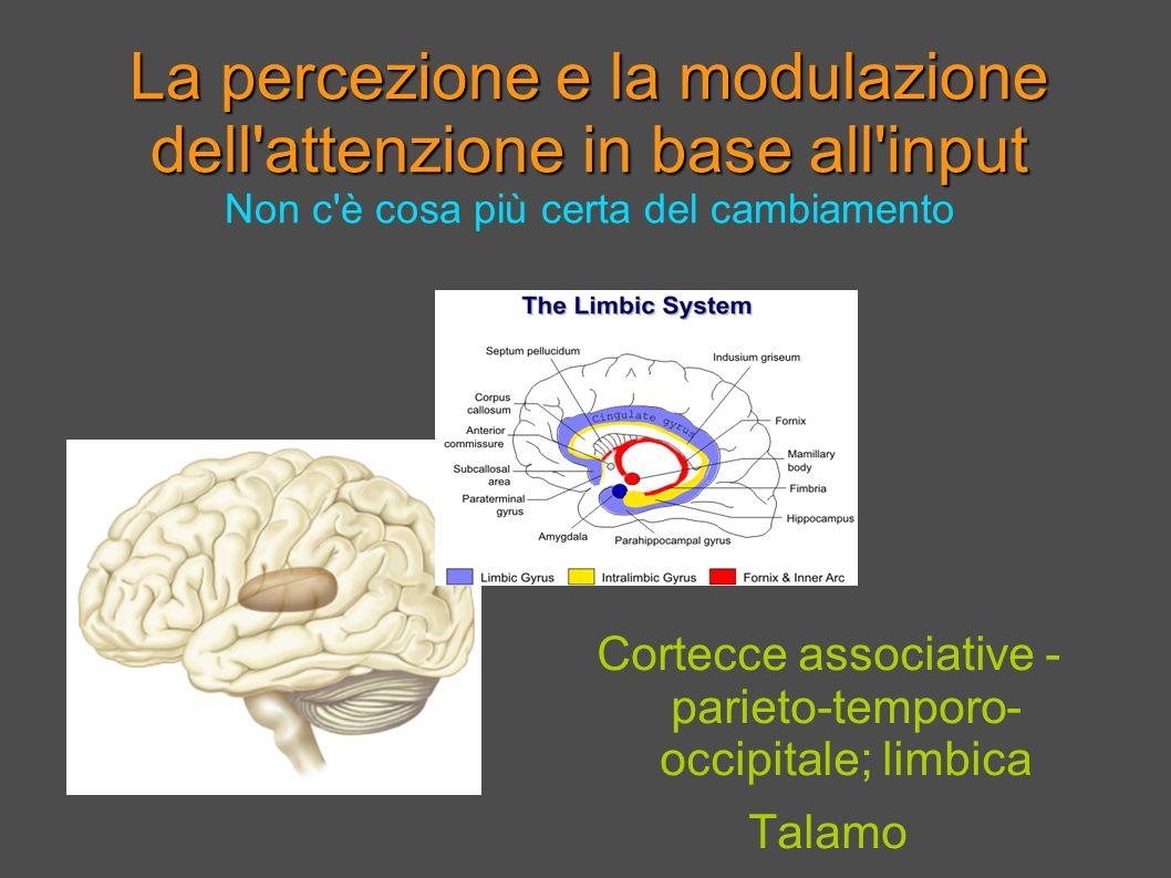 La percezione e la modulazione dell attenzione in base all input La percezione e la modulazione dell attenzione in base all input Non c è cosa più certa del cambiamento Cortecce associative - parieto-temporo- occipitale; limbica Talamo