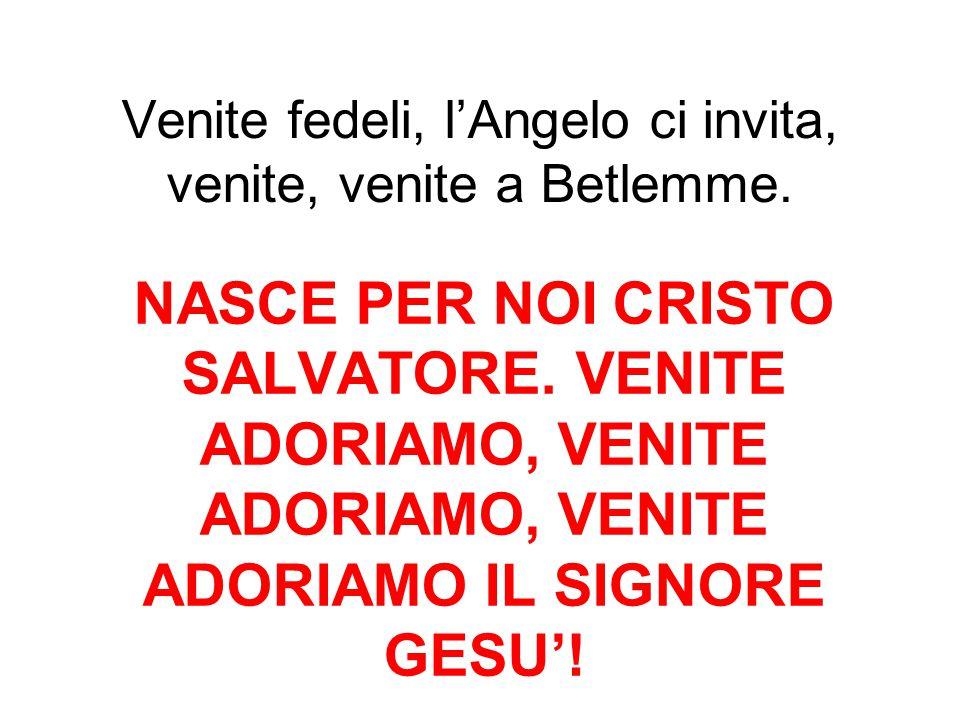 Venite fedeli, l'Angelo ci invita, venite, venite a Betlemme. NASCE PER NOI CRISTO SALVATORE. VENITE ADORIAMO, VENITE ADORIAMO, VENITE ADORIAMO IL SIG
