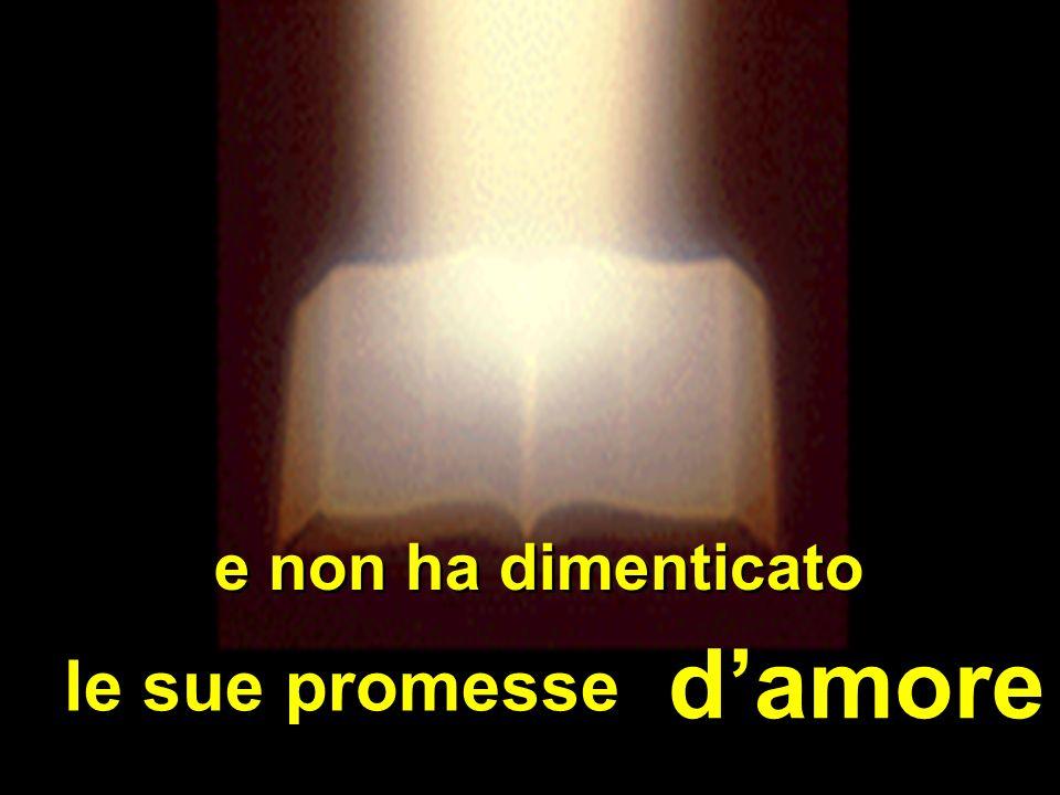 d'amore e non ha dimenticato le sue promesse