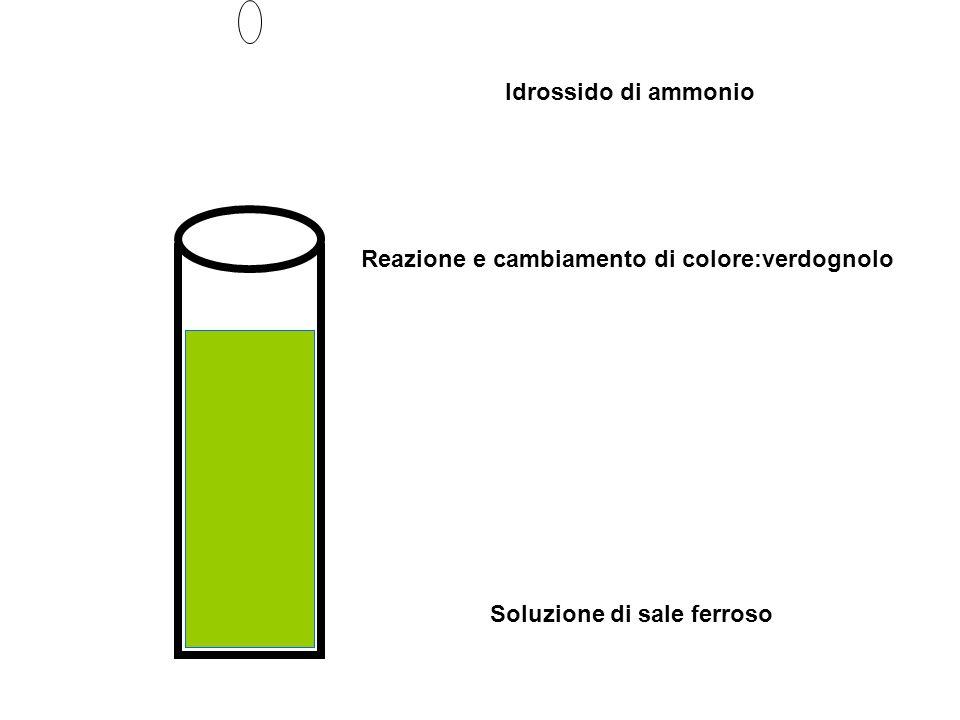 Soluzione di sale ferroso Idrossido di ammonio Reazione e cambiamento di colore:verdognolo