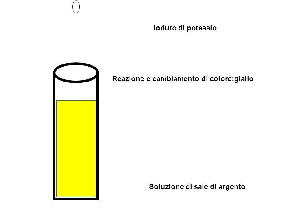 Soluzione di sale di argento Ioduro di potassio Reazione e cambiamento di colore:giallo