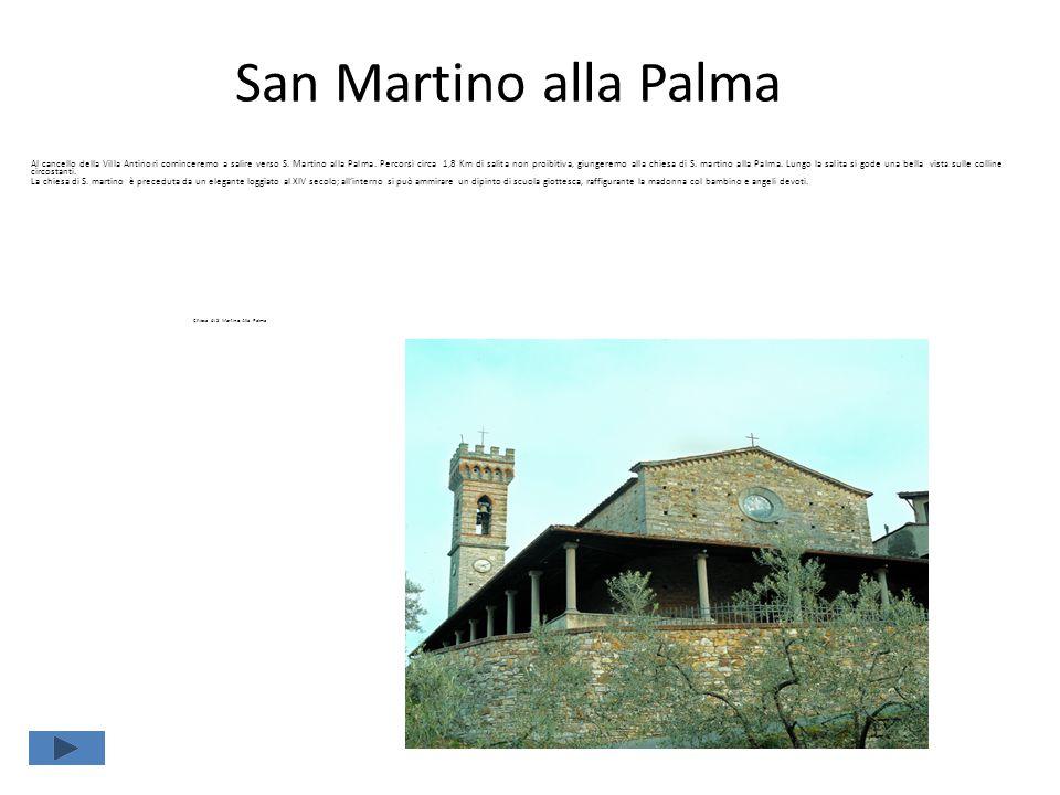 San Martino alla Palma Al cancello della Villa Antinori cominceremo a salire verso S. Martino alla Palma. Percorsi circa 1,8 Km di salita non proibiti