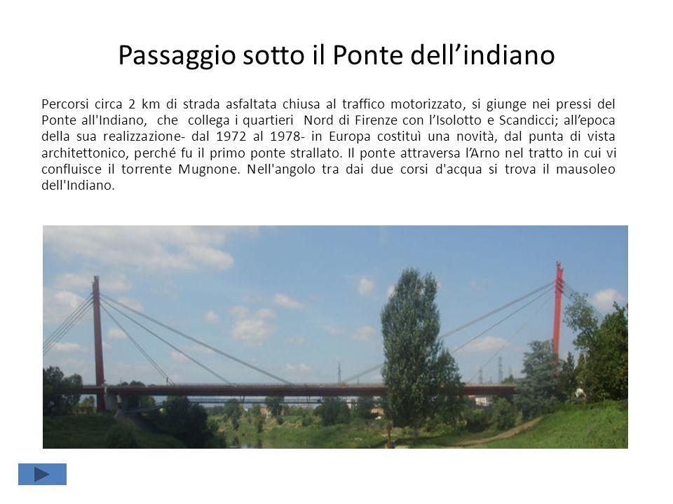 Passaggio sotto il Ponte dell'indiano Percorsi circa 2 km di strada asfaltata chiusa al traffico motorizzato, si giunge nei pressi del Ponte all Indiano, che collega i quartieri Nord di Firenze con l'Isolotto e Scandicci; all'epoca della sua realizzazione- dal 1972 al 1978- in Europa costituì una novità, dal punta di vista architettonico, perché fu il primo ponte strallato.