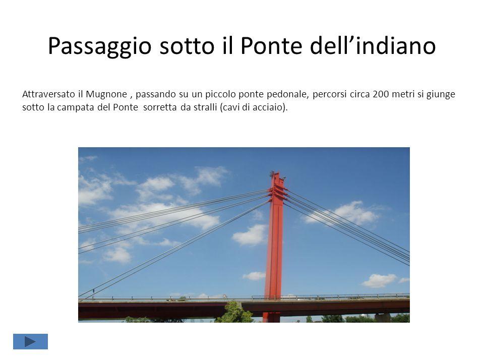 Passaggio sotto il Ponte dell'indiano Attraversato il Mugnone, passando su un piccolo ponte pedonale, percorsi circa 200 metri si giunge sotto la campata del Ponte sorretta da stralli (cavi di acciaio).