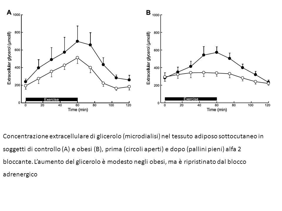 Concentrazione extracellulare di glicerolo (microdialisi) nel tessuto adiposo sottocutaneo in soggetti di controllo (A) e obesi (B), prima (circoli aperti) e dopo (pallini pieni) alfa 2 bloccante.