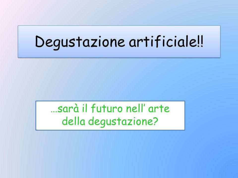 Degustazione artificiale!! …sarà il futuro nell' arte della degustazione?