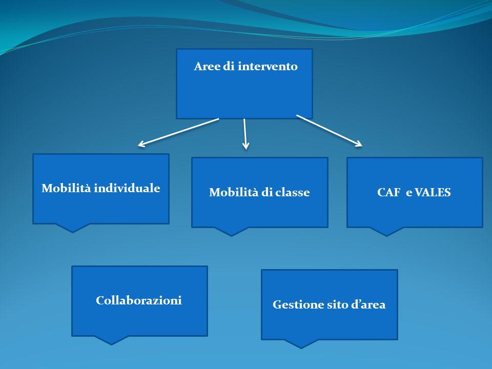Mobilità individuale Mobilità di classeCAF e VALES Aree di intervento Collaborazioni Gestione sito d'area