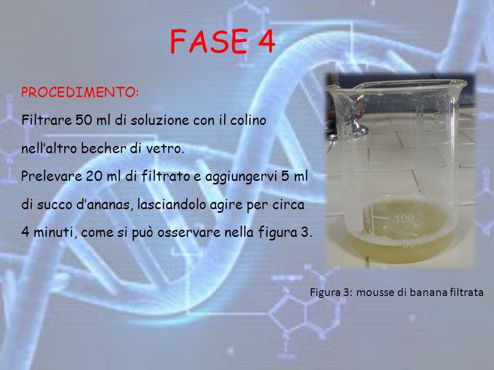 FASE 4 PROCEDIMENTO: Filtrare 50 ml di soluzione con il colino nell'altro becher di vetro. Prelevare 20 ml di filtrato e aggiungervi 5 ml di succo d'a