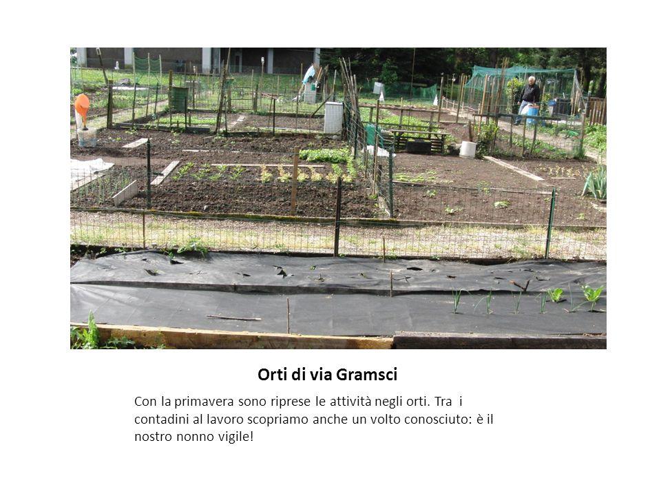 Orti di via Gramsci Con la primavera sono riprese le attività negli orti.