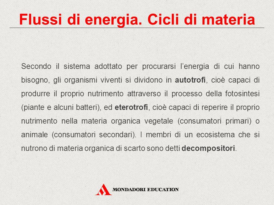 Flussi di energia. Cicli di materia Secondo il sistema adottato per procurarsi l'energia di cui hanno bisogno, gli organismi viventi si dividono in au