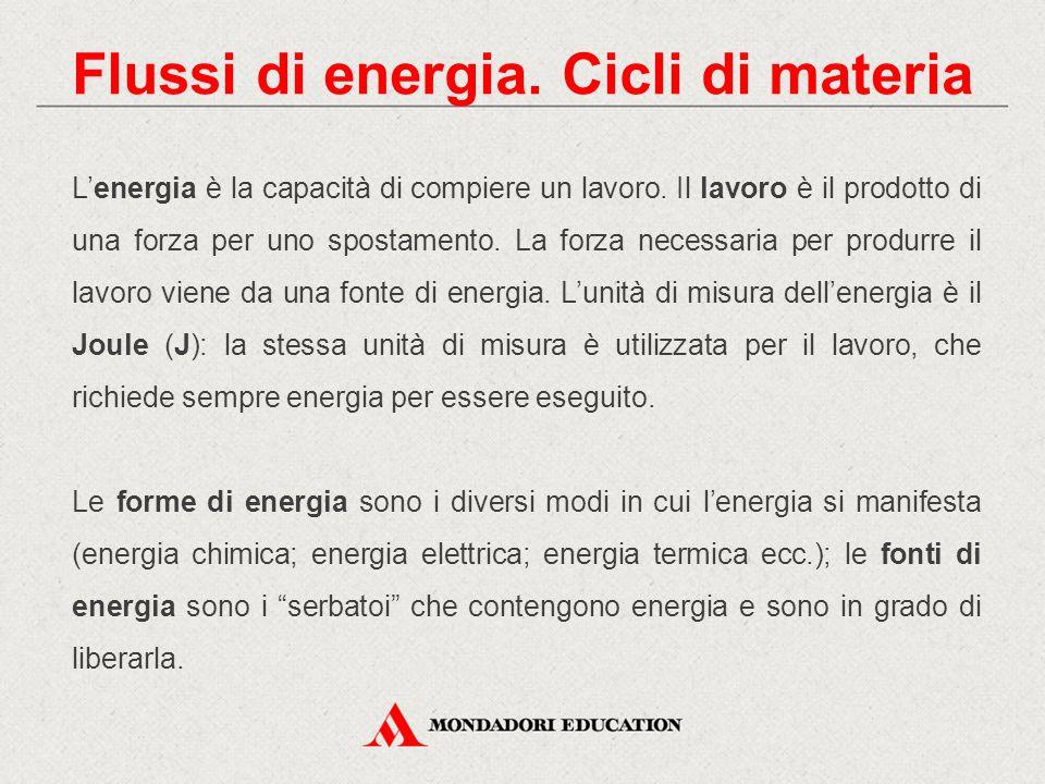 Flussi di energia. Cicli di materia L'energia è la capacità di compiere un lavoro. Il lavoro è il prodotto di una forza per uno spostamento. La forza