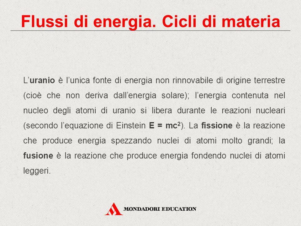 Flussi di energia. Cicli di materia L'uranio è l'unica fonte di energia non rinnovabile di origine terrestre (cioè che non deriva dall'energia solare)