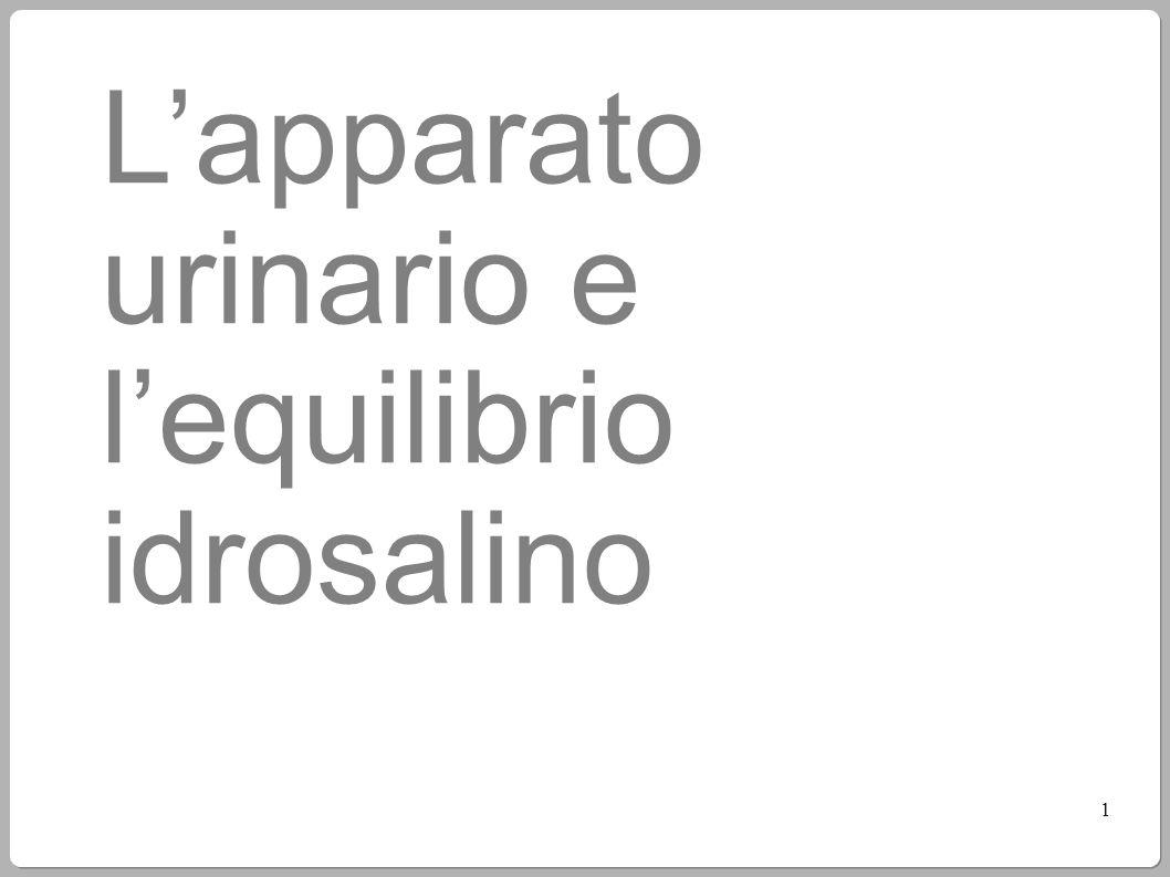 L'apparato urinario e l'equilibrio idrosalino 1