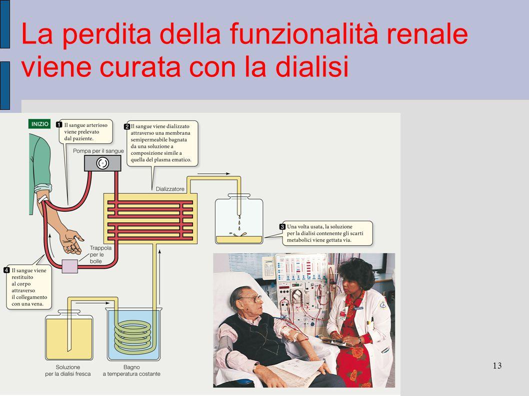 13 La perdita della funzionalità renale viene curata con la dialisi Sadava et al. Biologia.blu © Zanichelli editore, 2012