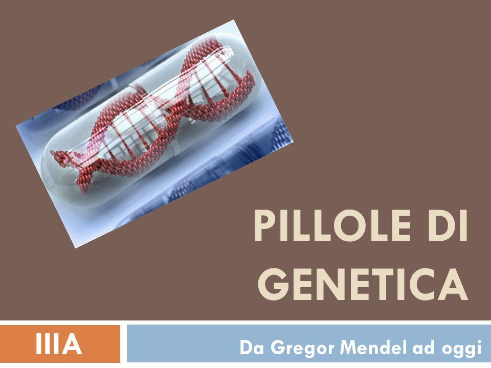 PILLOLE DI GENETICA IIIA Da Gregor Mendel ad oggi