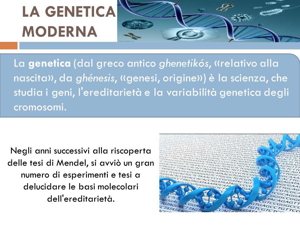 LA GENETICA MODERNA La genetica (dal greco antico ghenetikós, «relativo alla nascita», da ghénesis, «genesi, origine») è la scienza, che studia i geni, l ereditarietà e la variabilità genetica degli cromosomi.